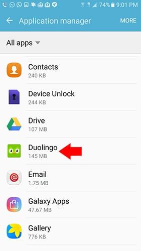 Clear Cache Data On Duo Lingo
